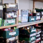 Food Banks Thriving In UK shelves food