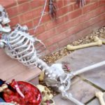 skeleton holds fort