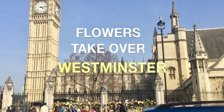 Flowers over take Westminster