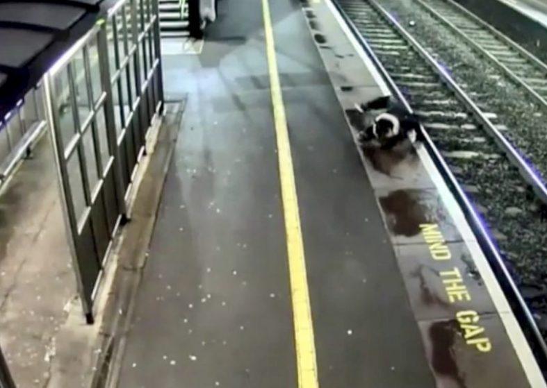 Rail risks reach 10-year-high