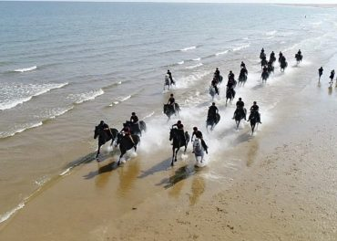 Household Cavalry Go To The Beach