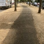 Brown Grass of London