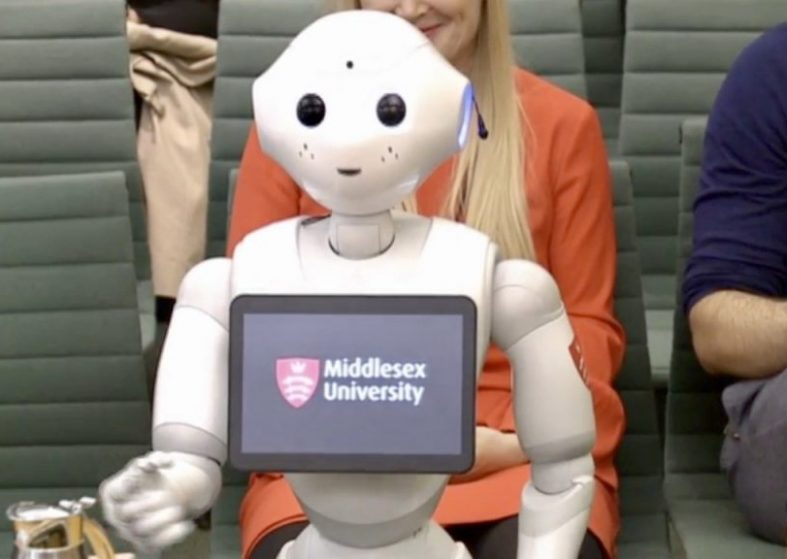 Pepper The Robot Gives Evidence In Parliament