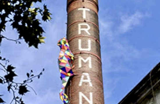 Vibrant Chameleon Spotlights Old Truman Building