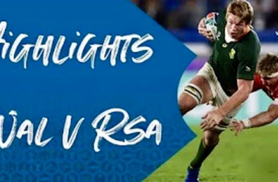 Wales v South Africa - Highlights