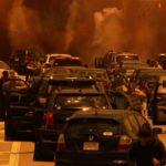 swarm attacks motorists
