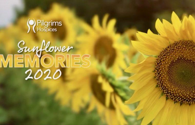Sunflower Memories 2020