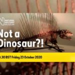 Live: I can't believe it's not a Dinosaur