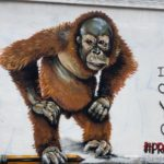 strong message to save the species