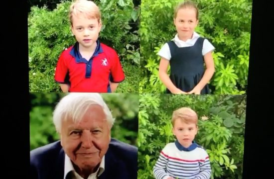 Royal Kids quiz David Attenborough