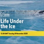 Live: What Survives Under the Ice in Antarctica?