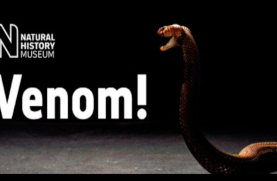 Venom kills, but can it cure? Live Talk and Quiz