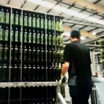 glass factory goes green