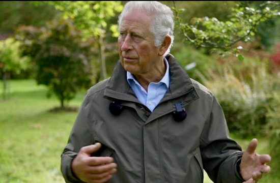 Prince Charles understands climate activists' anger
